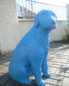 Garden of the Blue Dog