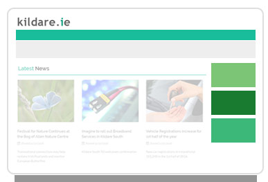 Advertise on kildare.ie - Fill in the Advertising Request Form