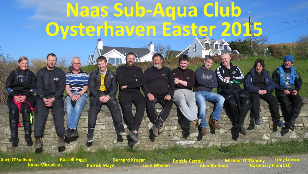Oysterhaven Group 2015