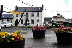 Athy Flowers