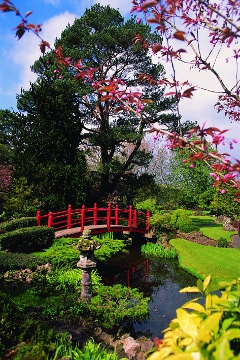 Japanes Gardens