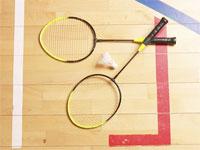 badmintoncourt200.jpg
