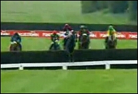 Guinness Gold Cup at Punchestown