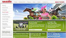 Punchestown Website