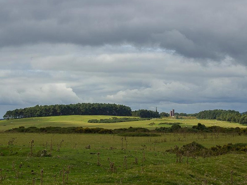 The Curragh plains with the military camp towers