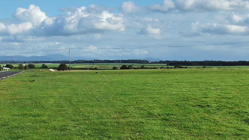 The Curragh, County Kildare