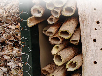 Build your own Bug Hotel