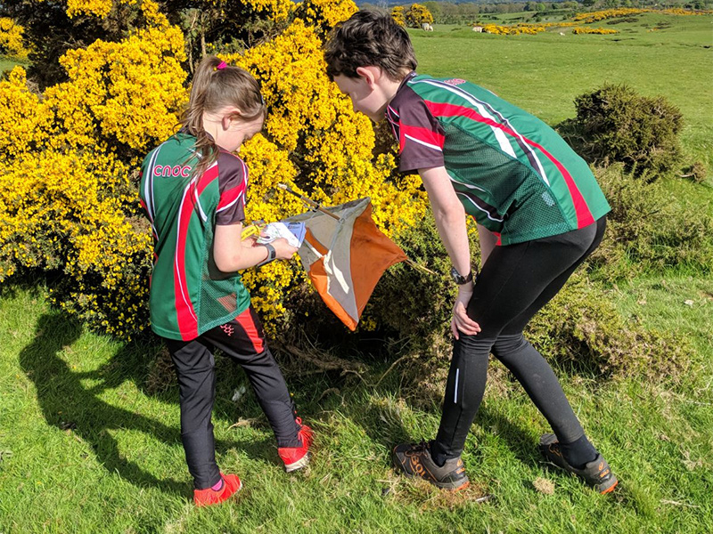 Orienteering Summer Evening Series 2018- The Curragh