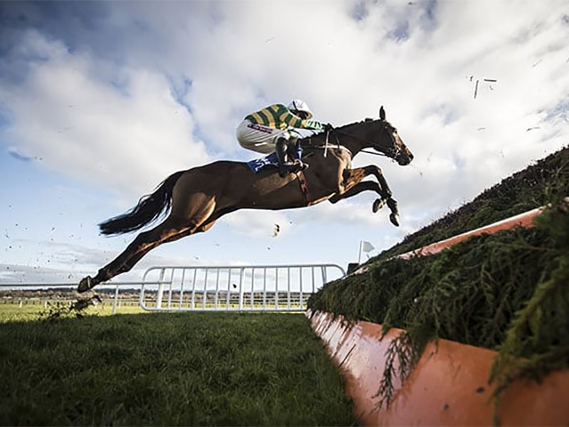 January Jumps at Naas Racecourse