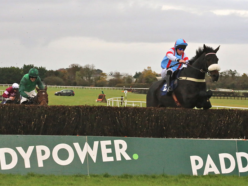 Paddy Power Cheltenham Trials Day at Naas Racecourse