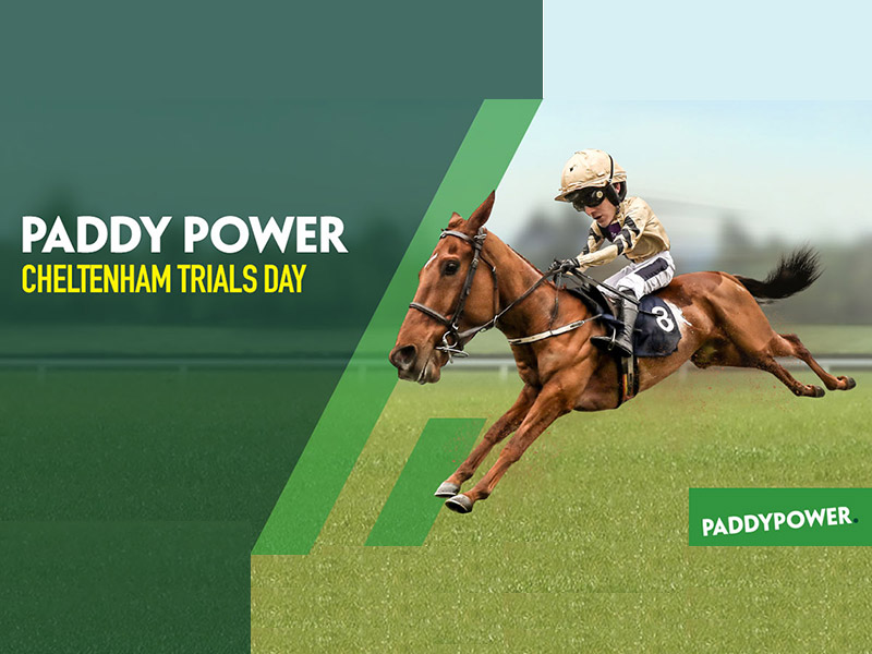 Paddy Power Cheltenham Trails Day at Naas Racecourse