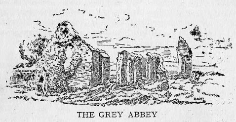Grey Abbey 72dpi.JPG