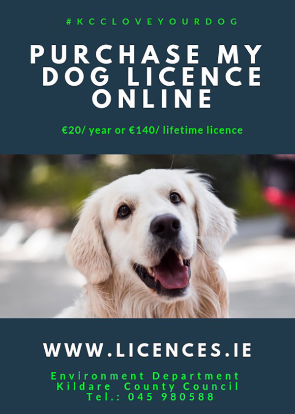 Purchase my Dog Licence ONLINE at www.licences.ie