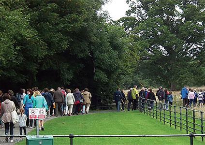 Kildare Walking Festival