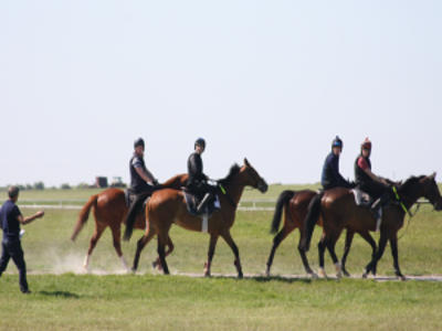 Applications Open for Exercise Rider Training Course