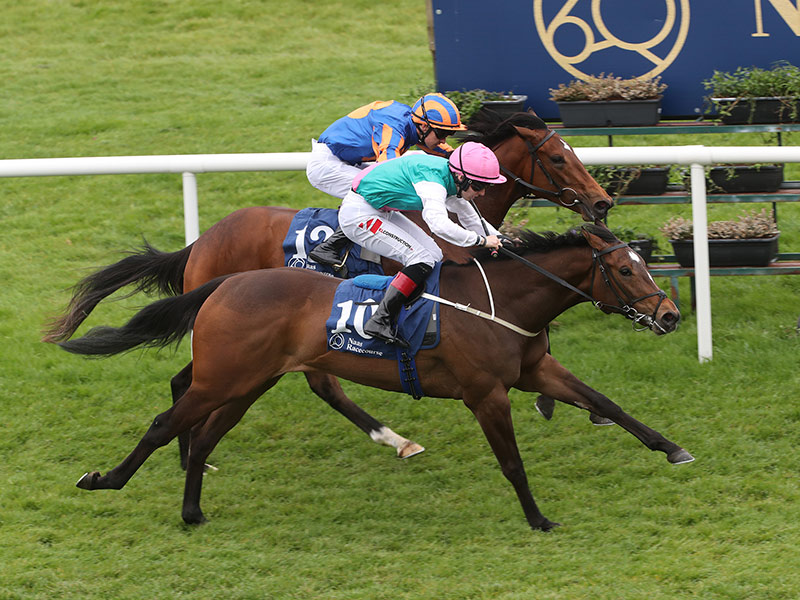 Champions to be crowned at Naas