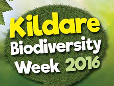 Kildare Biodiversity Week Events