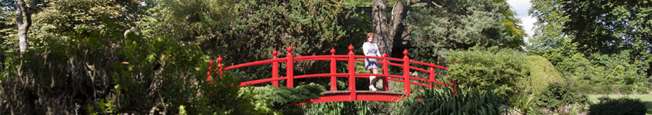 Visit the Japanese Gardens in County Kildare