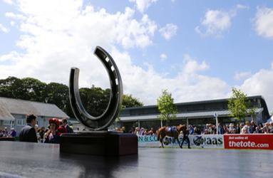Naas Racecourse